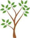 sepactree.png